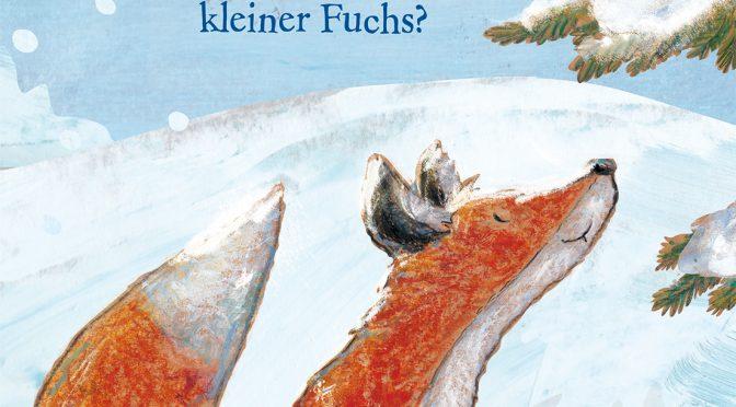 rezension Winterbuch Kinder | Motschiunig, Ulrike und Dailleux, Florence: Was glitzert im Winterwald, kleiner Fuchs?